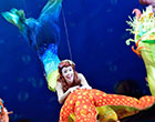 Danielle Stephen has also starred as the Little Mermaid in the stage show at Toyko Disneyland.